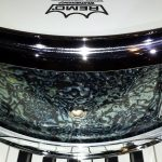 Bio Hazard Abalone Drum Wrap